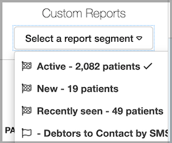 Dentally Patients Report - Custom Report Segments